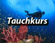 Tauchkurs